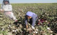 Çiftçiler Taban Fiyatın Açıklanmasını İstiyor