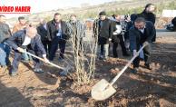Başkan Çiftçi, öğrencilerle ağaç dikimini gerçekleştirdi