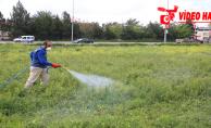 Haliliye Belediyesi, Larva İle Mücadele Çalışmalarını Devam Ettiriyor