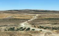 Şanlıurfa'da 31 Bin dekar Arazi Suya Kavuşacak
