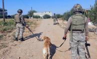 Rasaulayn'da Terör Saldırısı 1 Şehit, 5 Yaralı