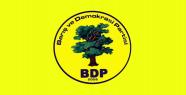 BDP Adayı belli oldu