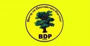 BDP'nin İlçe Meclis Adayları