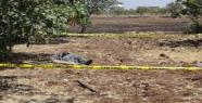 Birecik'te tarlada erkek cesedi bulundu