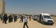Ceylanpınar polis şehitlerinde gelişme
