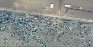 Kapımızdaki Otomobil Çöplüğü