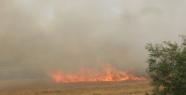 Şanlıurfa'da anız yangınları önlenemiyor