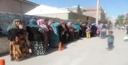 Suriyeli mültecilerin ekmek kuyruğu