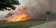 TOKİ'de Orman Yangını