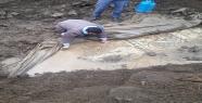 Urfa'da altıncı yüzyıla ait mozaik bulundu