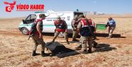 Urfa'da genç kız öldürüldü