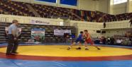 Urfa'da Güreş Şampiyonası Başladı