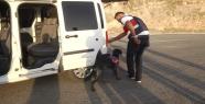 Urfa'da Jandarma Yolları Kontrol Altına...