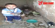 Urfa'da küçük çocuğun tavşan sevgisi