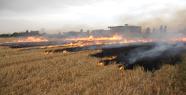 Urfa'da önüne geçilmeyen yangınlar
