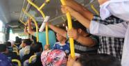 Urfa'da otobüs eziyeti