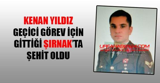 Urfa'da çalışan Astsubay Şırnak'ta şehit oldu