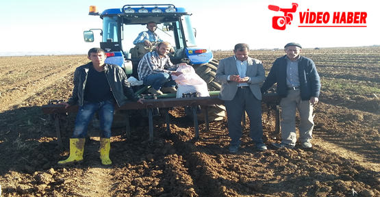 Urfa'da kuraklık çiftçileri düşündürüyor