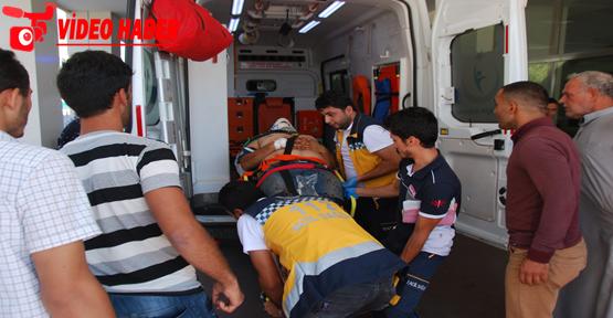 Urfa'da otomobil tarlaya yuvarlandı