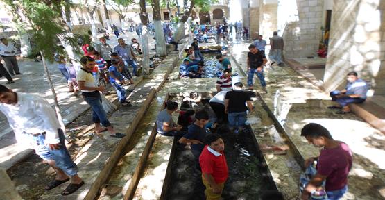 Urfa'da sıcak ile mücadele