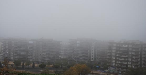 Urfa'da sis hakim oldu