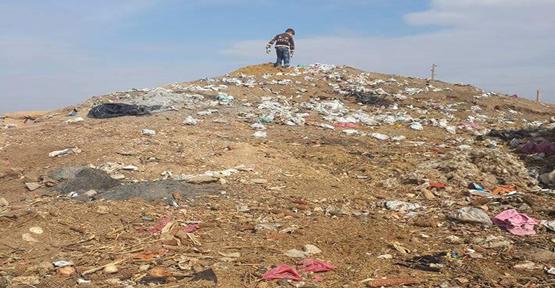 Urfa'da Toplanmayan Çöp Hastalık Saçıyor