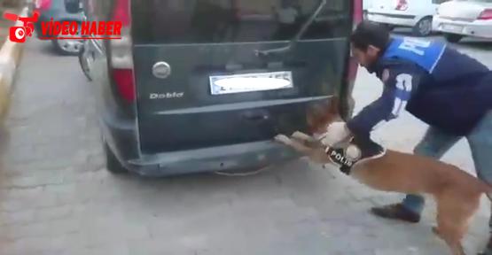 Urfa'da uyuşturucu operasyonu, 5 gözaltı