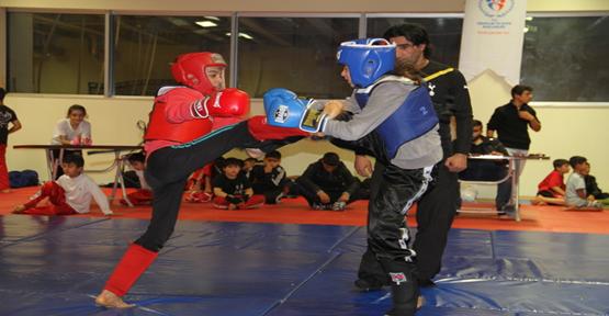 Urfa'da wushu turnuvası