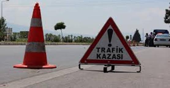 Urfalı mevsimlik işçileri kaza yaptı, 9 yaralı