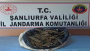 Viranşehir'de  Uyuşturucu Ve Silah Ele Geçirildi