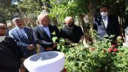 Urfa'da 15 Temmuz şehidi mezarı başında anıldı