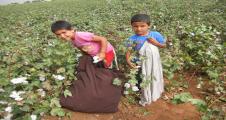 Urfa'da çocuk işçiler
