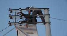 Urfa'da elektrik yine can aldı