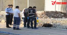 Urfa'da boş arazide atılmış kadın cesedi bulundu